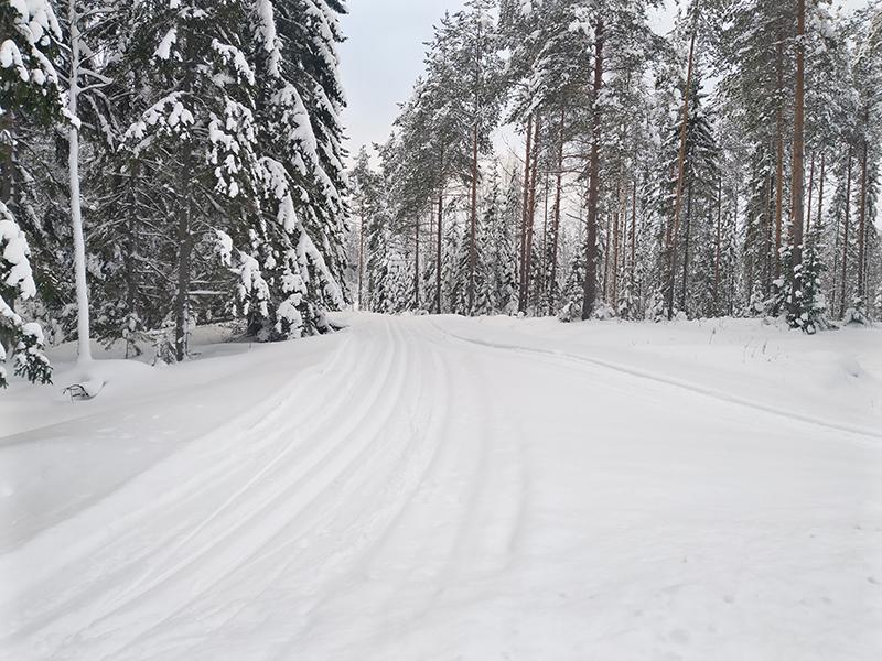 Matkailutila Surkeenjärvi