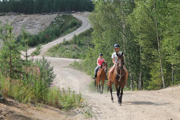 Hevoset ovat tiivis osa useiden korpilahtelaisten arkea